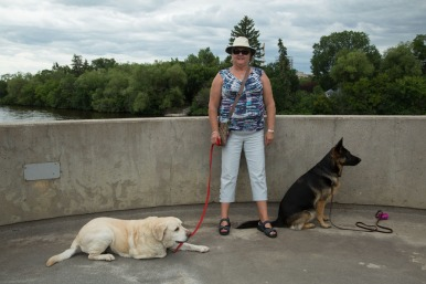 Judi and the dogs at one of the lookouts