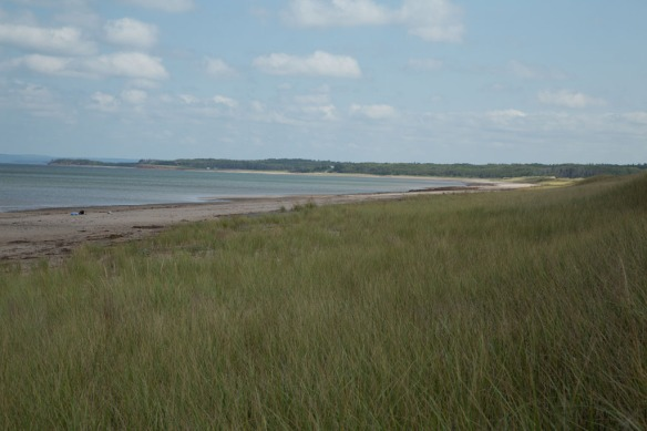 Pomquet Provincial Park Beach dunes leading down to the beach