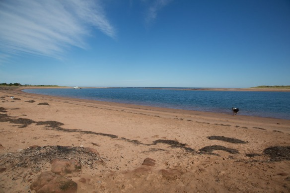 Tracadie Beach looking at the harbour entrance