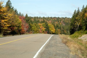 Bay of Fundy National Park fall colours from Hwy 114
