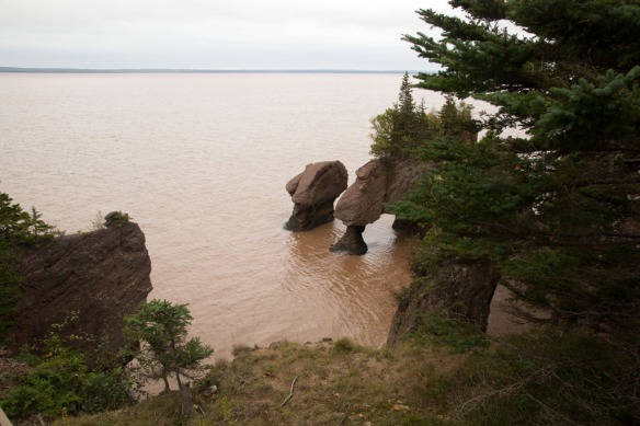 Hopewell Rocks from top viewing platform at1607
