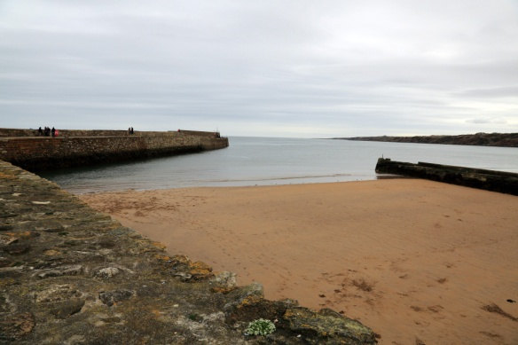 St Andrews Breakwater & East Sands