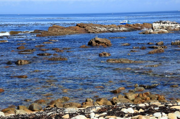 Crystal clear waters of the Atlantic Ocean at the Cape of Good Hope shoreline