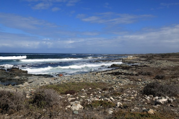 Rough-shoreline-of-Robben-Island.jpg