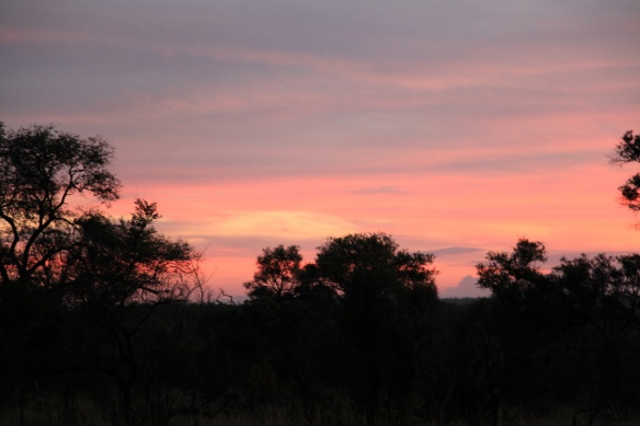 Sabi Sands sunset 4