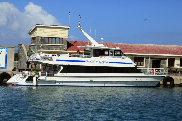 Sea-Princess-docked-on-Robben-Island-fortunately-it-isnt-our-round-the-world-Sea-Princess.jpg