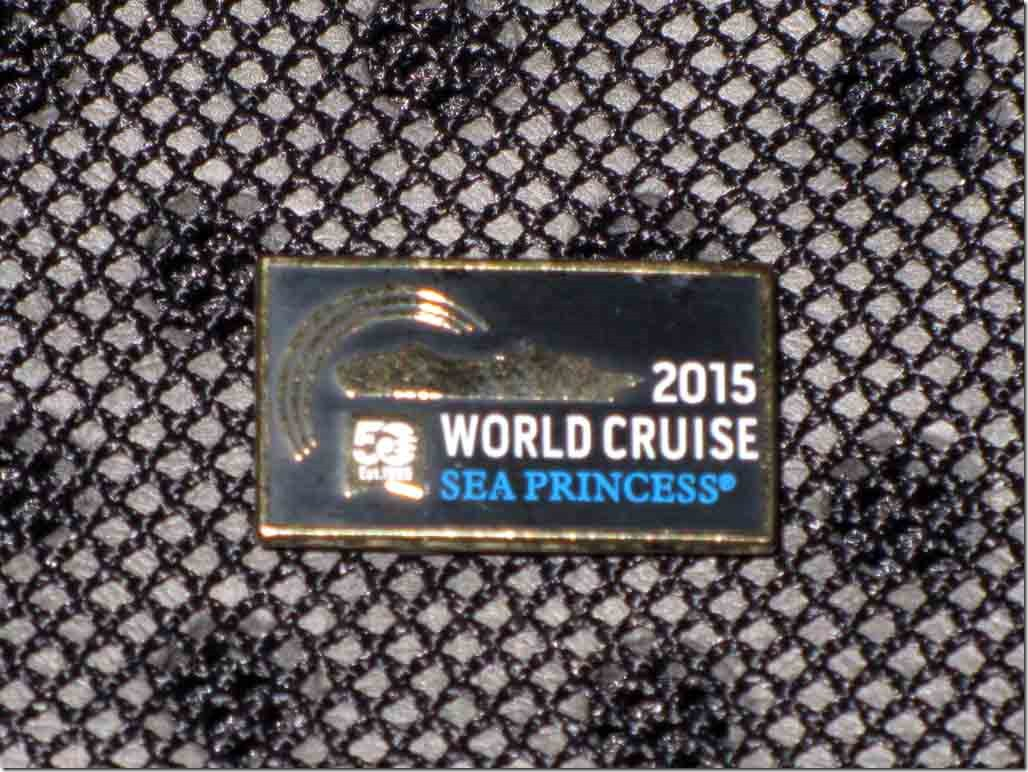 2015 World Cruise magnetic pin