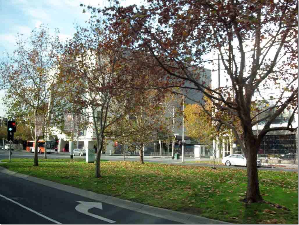 A sample of Melbourne's wide tree lined boulevardes