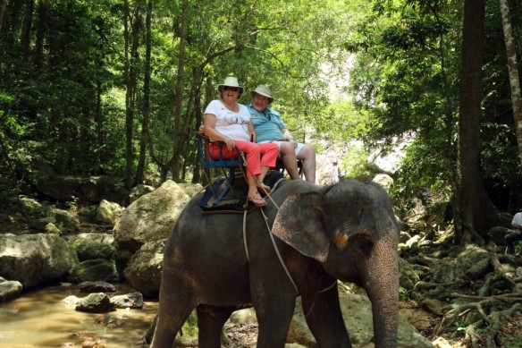 Andy and Judi sitting atop the elephant