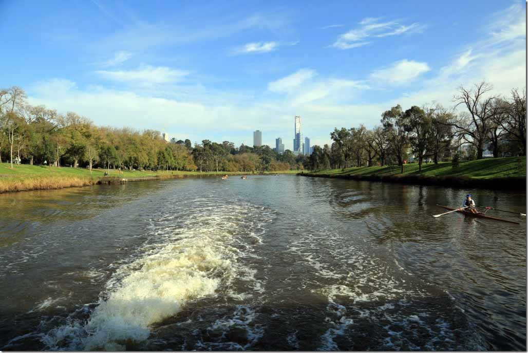 Yarra River cruise looking downriver with parkland on both sides
