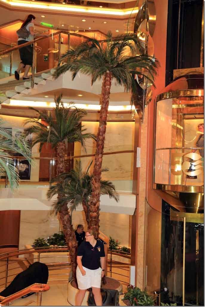Atrium palm trees