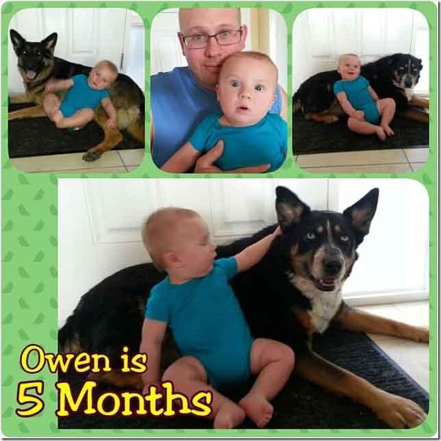 Owen at 5 months 2