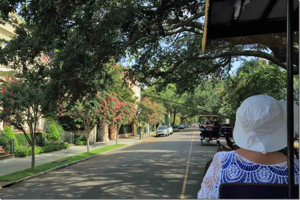 Charleston tour continuing along tree lined Meeting Street