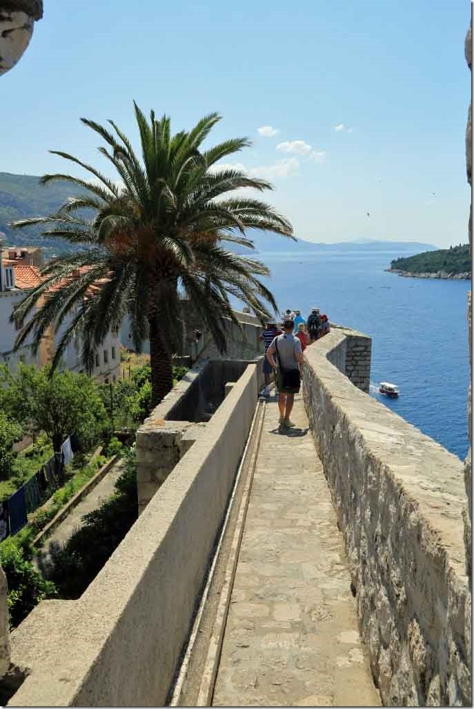 Dubrovnik Wall heading down with palm tree next to wall