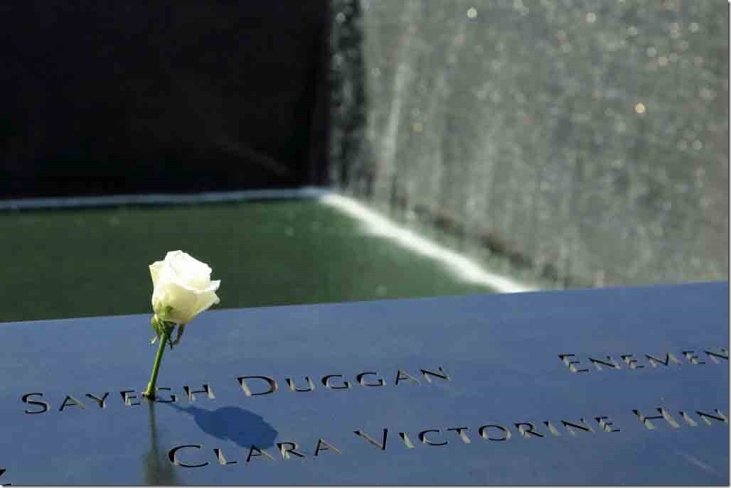 Ground Zero one of the many white roses affixed to the name of one of the over 3000 who perished 2