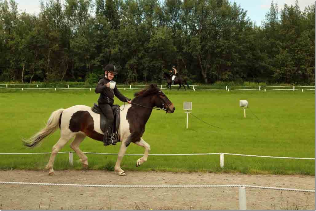 Horse show 13
