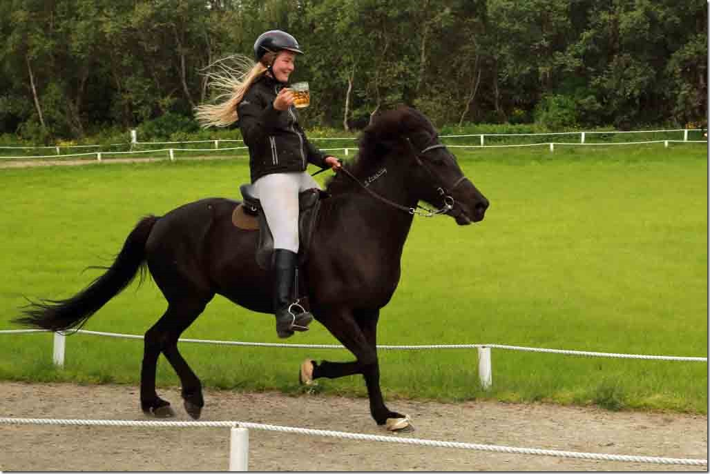 Horse show 17