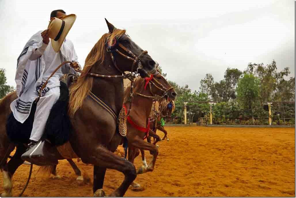Hacienda Mamacona horse show finale 3