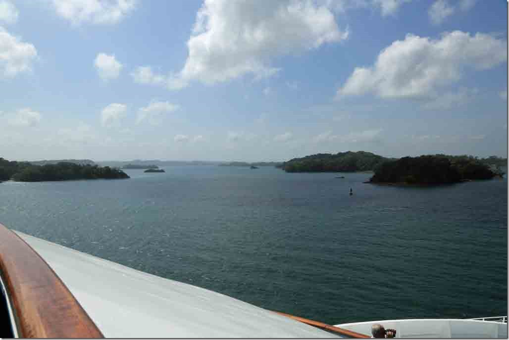 Some of the many small islands while navigating through fresh water Gatun Lake