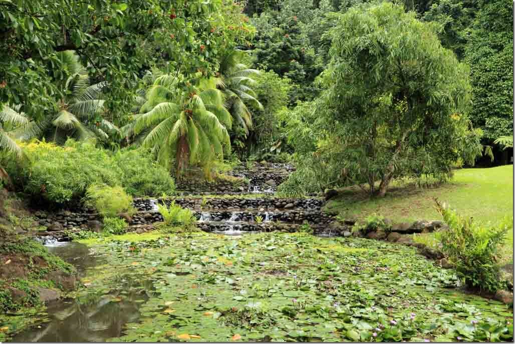 Vaipahi gardens tiered water gardens
