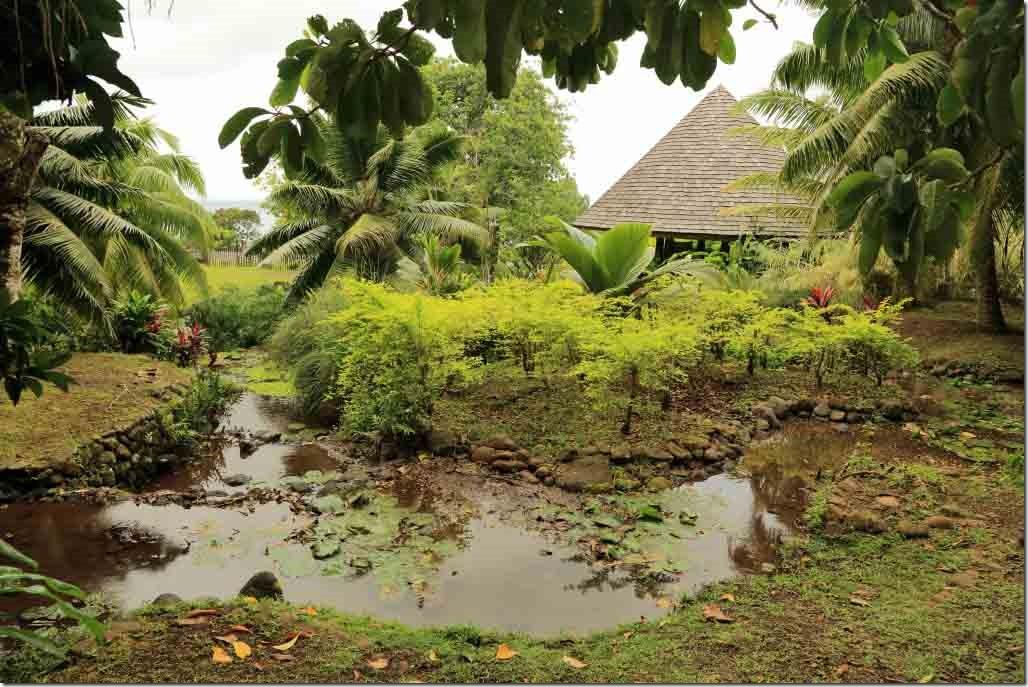 Vaipahi gardens water garden 2