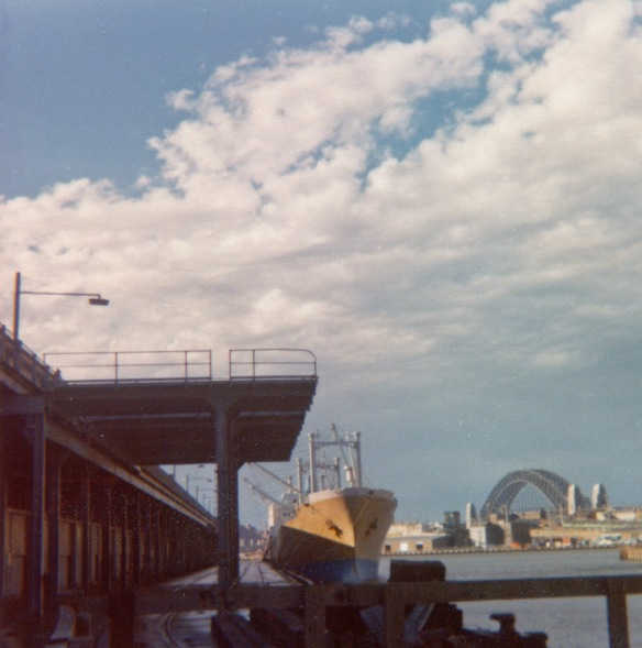 1977 - Wild Auk, Sydney Australia, Wild Auk alongside Piermont Docks while loading frozen meat