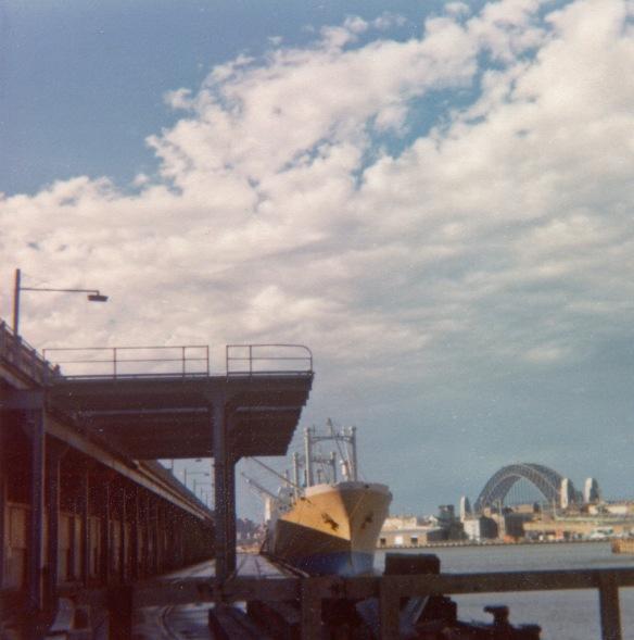 1977 - Wild Auk, Sydney Australia, Wild Auk alongside Piermont Docks while loading frozen meat