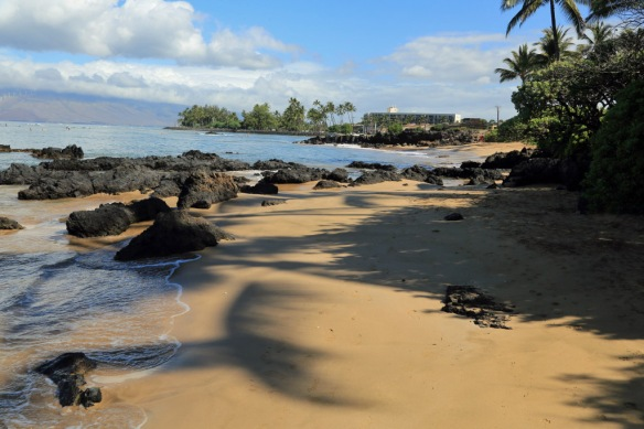 Small secluded beaches next to Cove Park 3