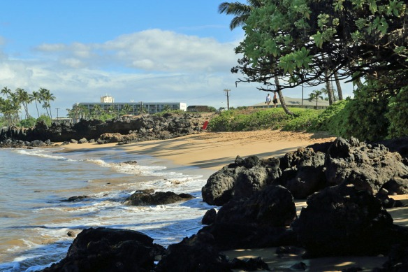 Small secluded beaches next to Cove Park