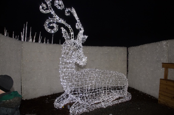 another-reindeer
