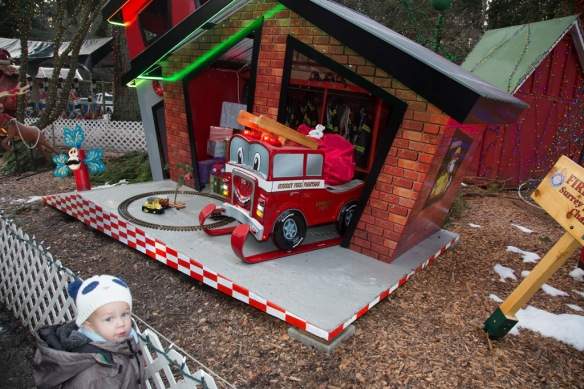 bright-nights-owen-checking-out-surrey-display
