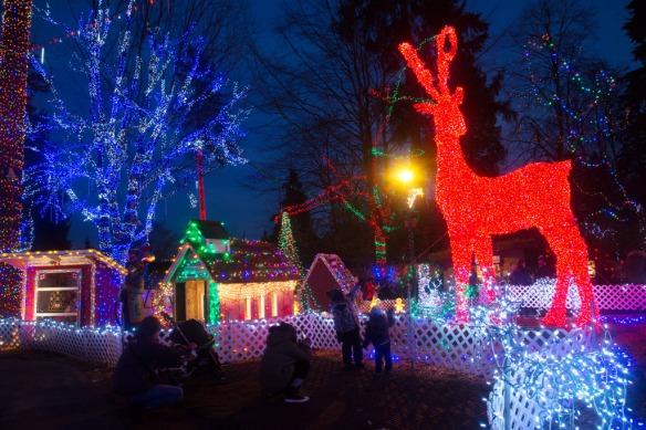 bright-nights-plaza-reindeer-lights