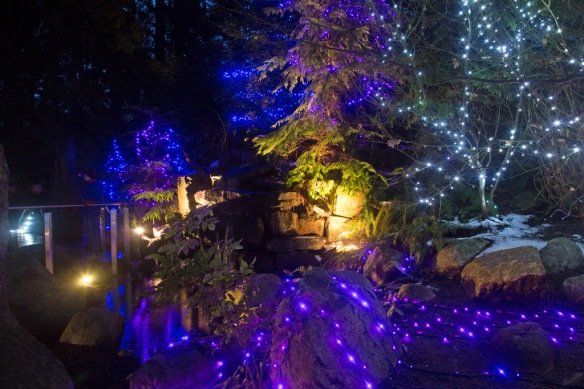 capilano-cliff-walk-lights-at-the-waterfall-on-the-top-path