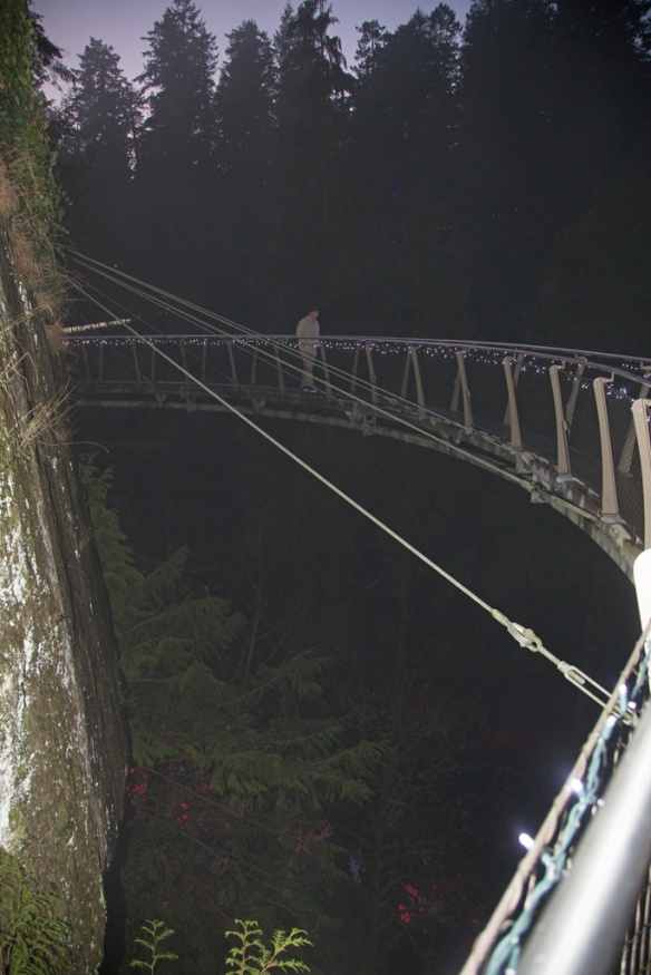 capilano-cliff-walk-suspended-from-the-cliff-above-the-canyon-2