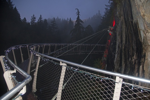 capilano-cliff-walk-suspended-from-the-cliff-above-the-canyon