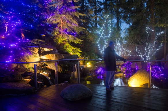 capilano-cliff-walk-viewing-platform-and-lights-at-the-top