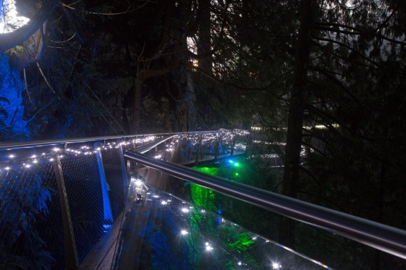 capilano-cliff-walk-with-bridge-lights-in-background