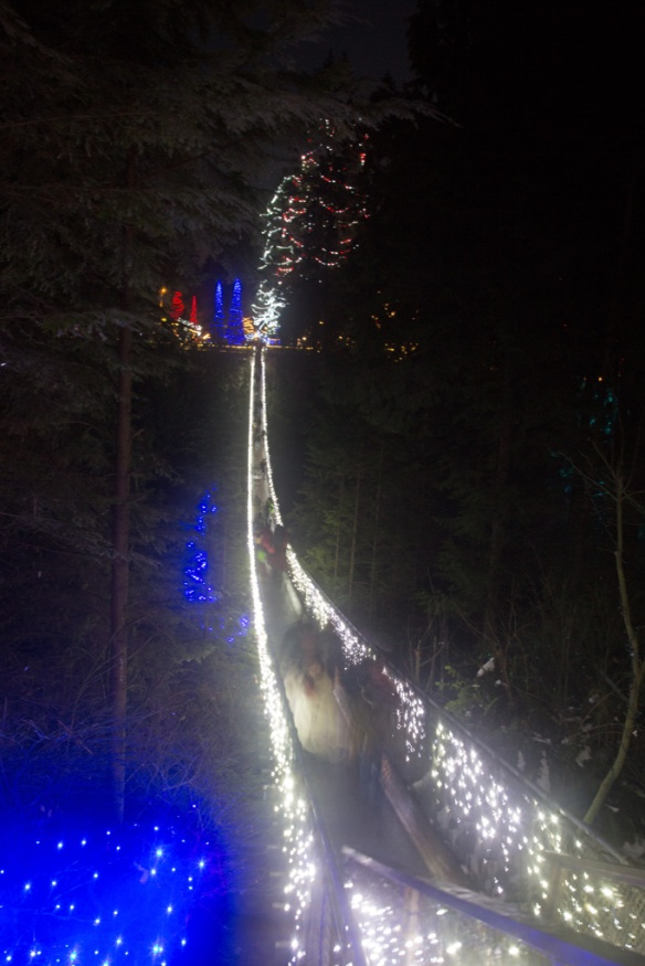 capilano-suspension-bridge-from-the-opposite-bank