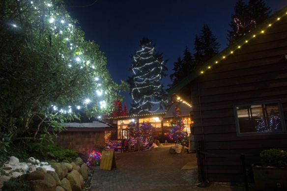 capilano-tree-lighting-around-the-giftshop