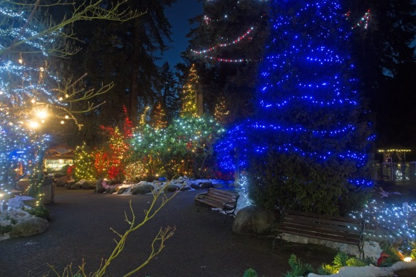 capilano-tree-lights-in-front-of-giftshop-2