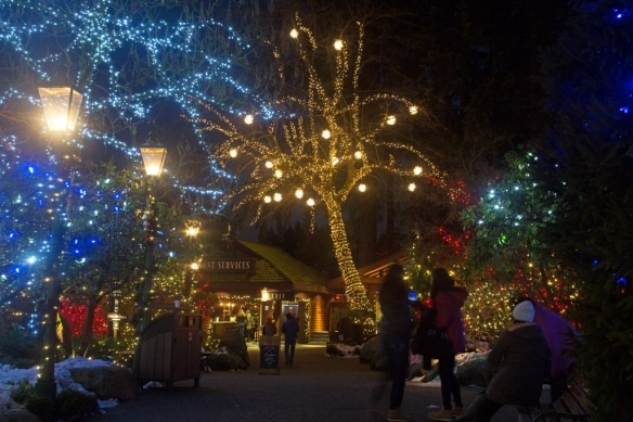 capilano-tree-lights-in-front-of-giftshop-3