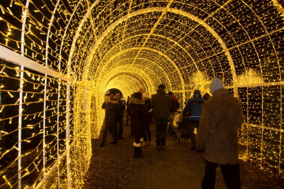 light-tunnel-in-the-maze