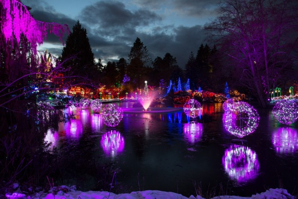 vandusen-frozen-lake-lights