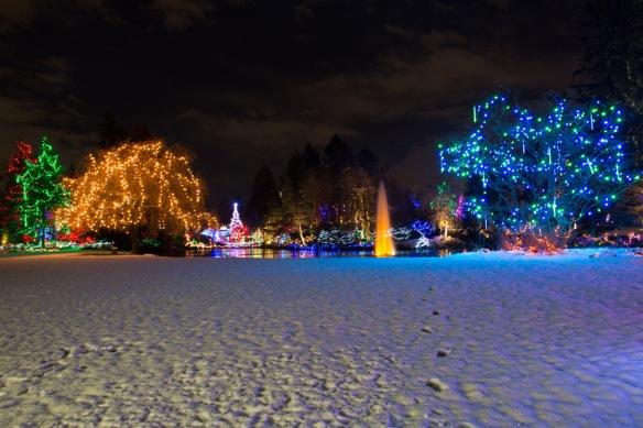 vandusen-lake-lights-3