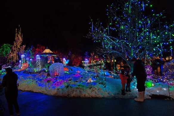 vandusen-light-display-at-edge-of-lake