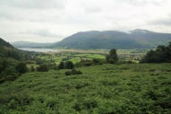 Whinlatter Forest Park looking down towards Lake Bassenthwaite