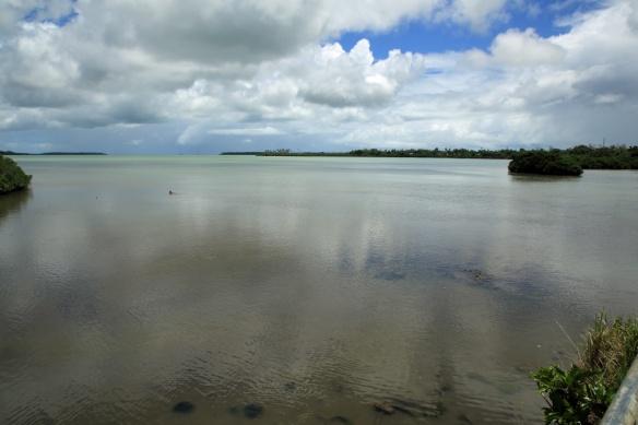 16 Capt Cook landing site looking offshore