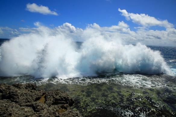 28 West coast blowholes 5