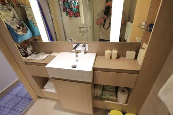 Bathroom counter and storage