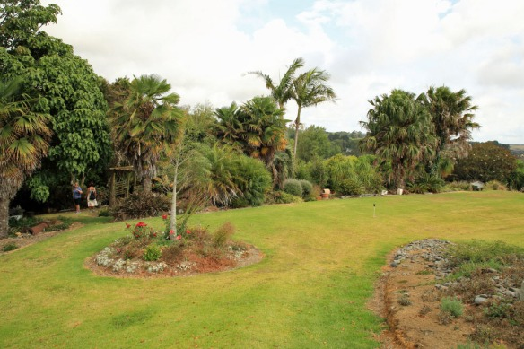 Haumoana Farm gardens